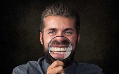 Zahn – Organ – Verbindungen